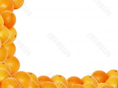 high resolution tangerine frame