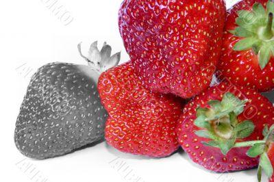 strawberry outcast #2