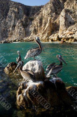 sea, beach, cabos, fun, Mexico