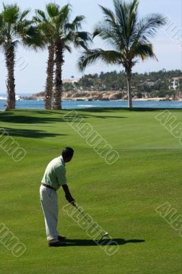 golf, man, beach, sport, mexico