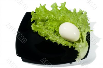 The boiled egg and green salad.