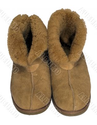 Sheep Skin Shoes
