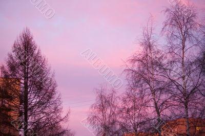 Sunset in purple tones