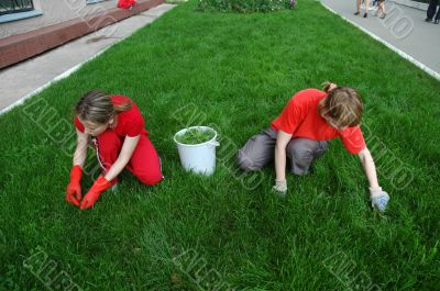 Work at a lawn