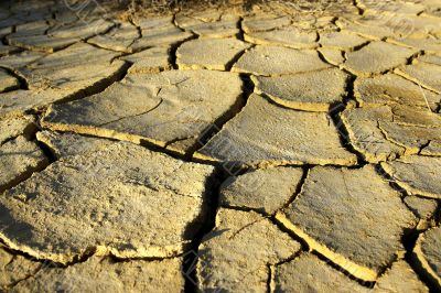 coming drought