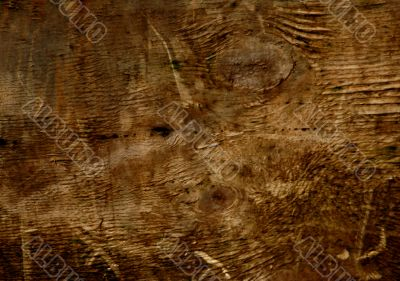 Wood Grunge Abstract