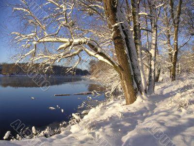 Winter landscape near the river.