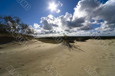 Seaside Baltic  - a dune