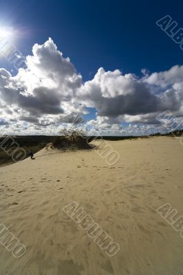 Seaside Baltic  - a dune