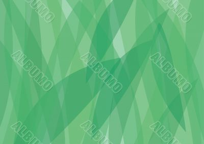 Background from a green herb.