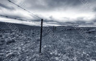 Australian Livestock Fence