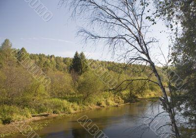 National reserve  Deer Streams The river Serga 1
