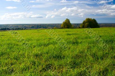 Beautiful summer landscape. The nature.