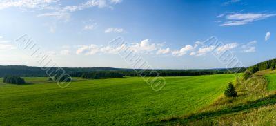 Beautiful summer landscape. The nature. Panorama
