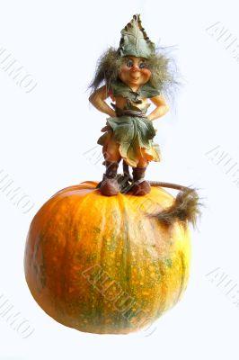 Hallowe`en gnome
