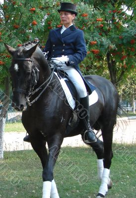 equestrian saddlewoman on black stallion