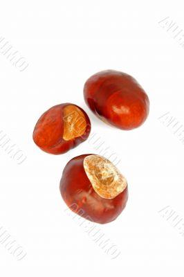 tasty chestnuts