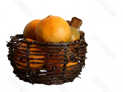 Tangerines in Barbed-Wire Basket