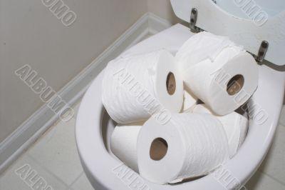 Toilet Overflow