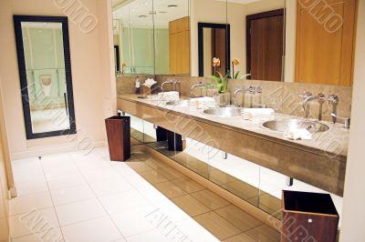 luxurious lavatory