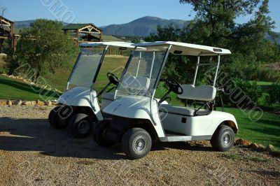 Carts in golf club