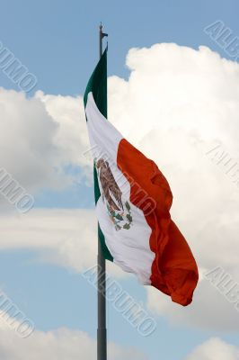 Mexican flag 5