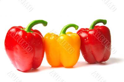 excellent red and yellow peppers