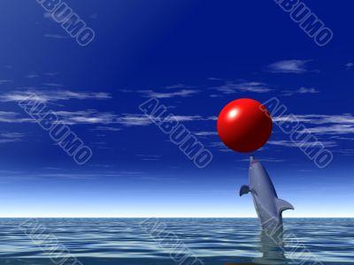 merry dolphin