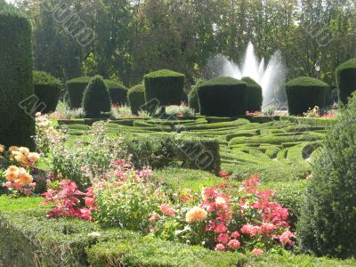 french garden of Le N