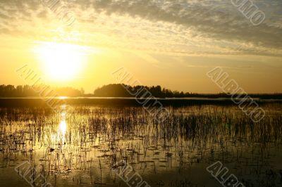 evening beautifully lake