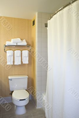 Toilet, towel rack and shower
