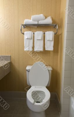 toilet and towel rack