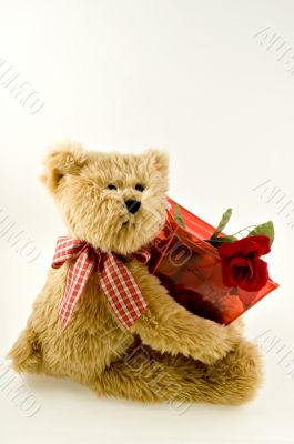 Teddy Bear Holding Container of Roses