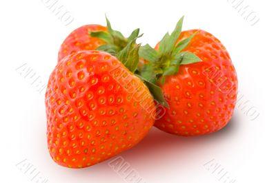 Three ripe strawberries isolated