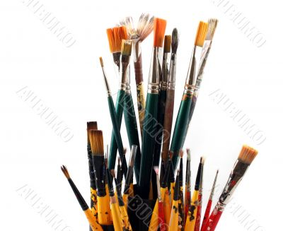 PaintBrushes on a white Background - Close up