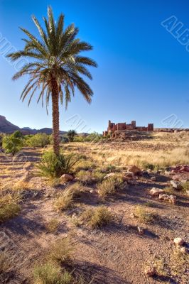 morocco wild landscape