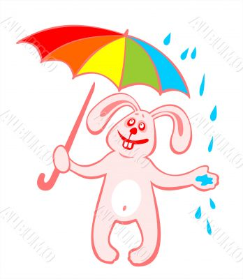 Cheerful rabbit and umbrella