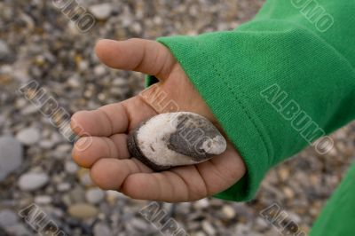 sea rounded cloudy stone on a child`s hand