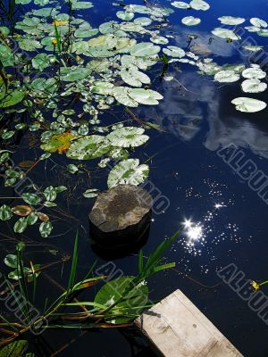 hot windless midday, reflection in water