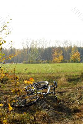 Bicycle on a grass