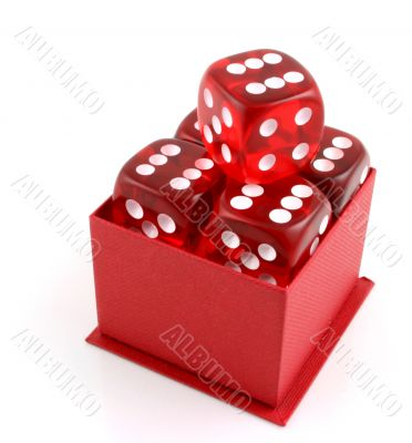 5 Dice in a Box