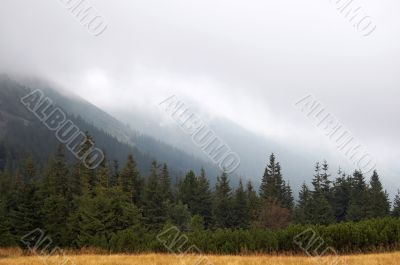 Overcast mountain view