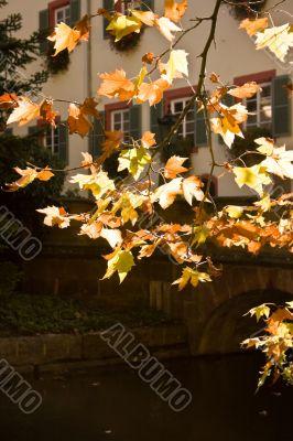 European Castle in Fall