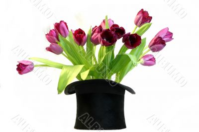 Black hat on white with tulips