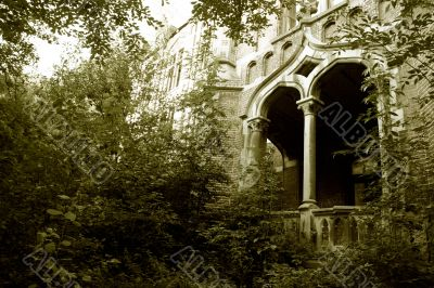Overgrown entrance
