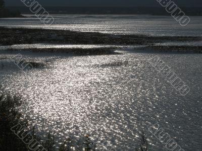sunshine in the lake