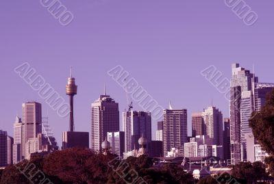 Sydney Skyline In Magenta