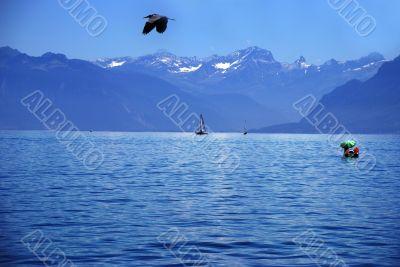 water scape, Switzerland