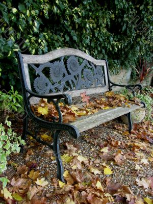 Old Garden Bench with Fallen Leaves