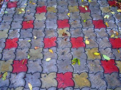 Sidewalk With Coloured Autumn Leafs